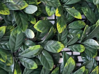 Jardin Vertical Artificial Pvc Muro Verde Decoredes Verde Amarillo (6090)